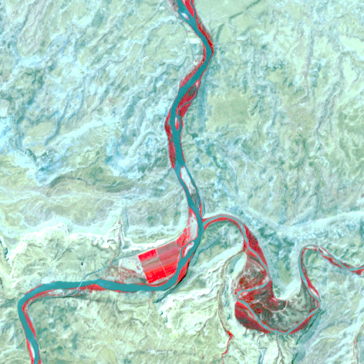 """This 2006 infrared image of the confluence of the Colorado and Dolores rivers in Utah was taken by the ASTER instrument on NASA's Terra satellite. The Colorado flows from north to south and the Dolores enters the image from the east. Vegetation appears bright red, including an alfalfa field along the Colorado and a wet """"bottom"""" area along the Dolores that has extensive tamarisk, an invasive tree from Eurasia."""