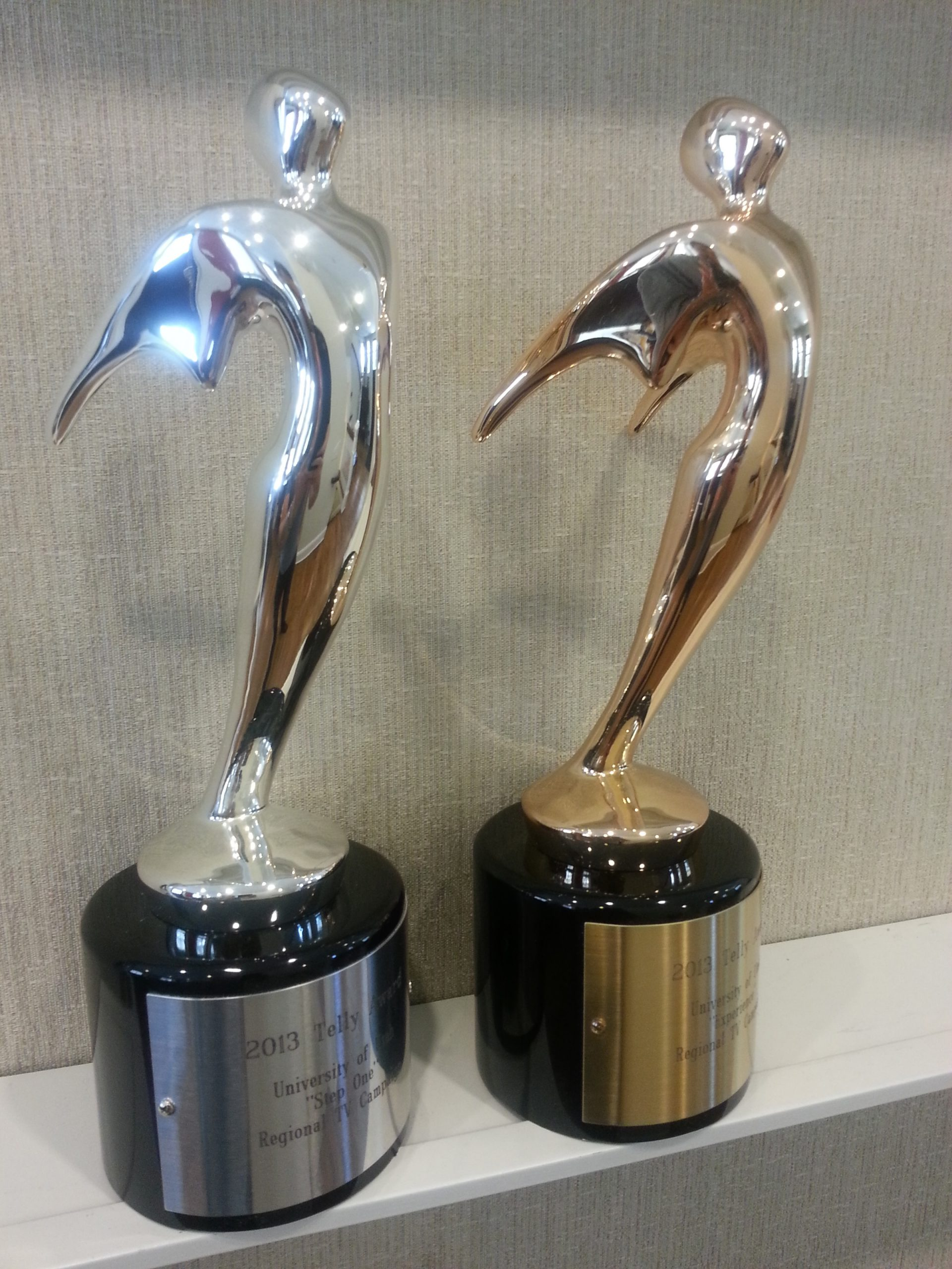 2013 Silver and Bronze Telly Awards.