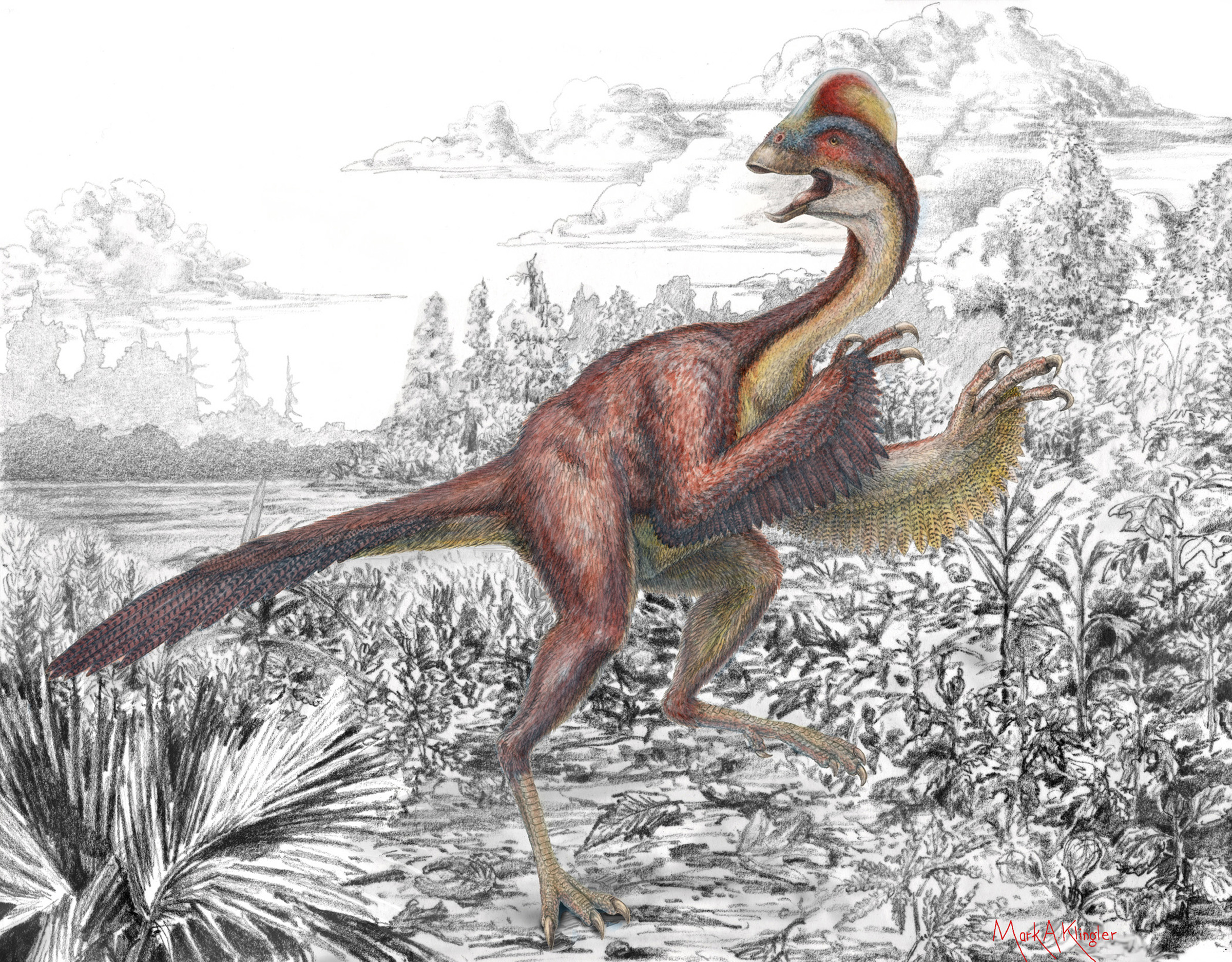 """Anzu wyliei – a bird-like dinosaur nicknamed the """"chicken from hell"""" that roamed the Dakotas 66 million years ago – appears in its natural environment in this artist's depiction. Discovery and description of the new dinosaur was announced by the University of Utah, Carnegie Museum of Natural History and Smithsonian Institution's National Museum of Natural History."""