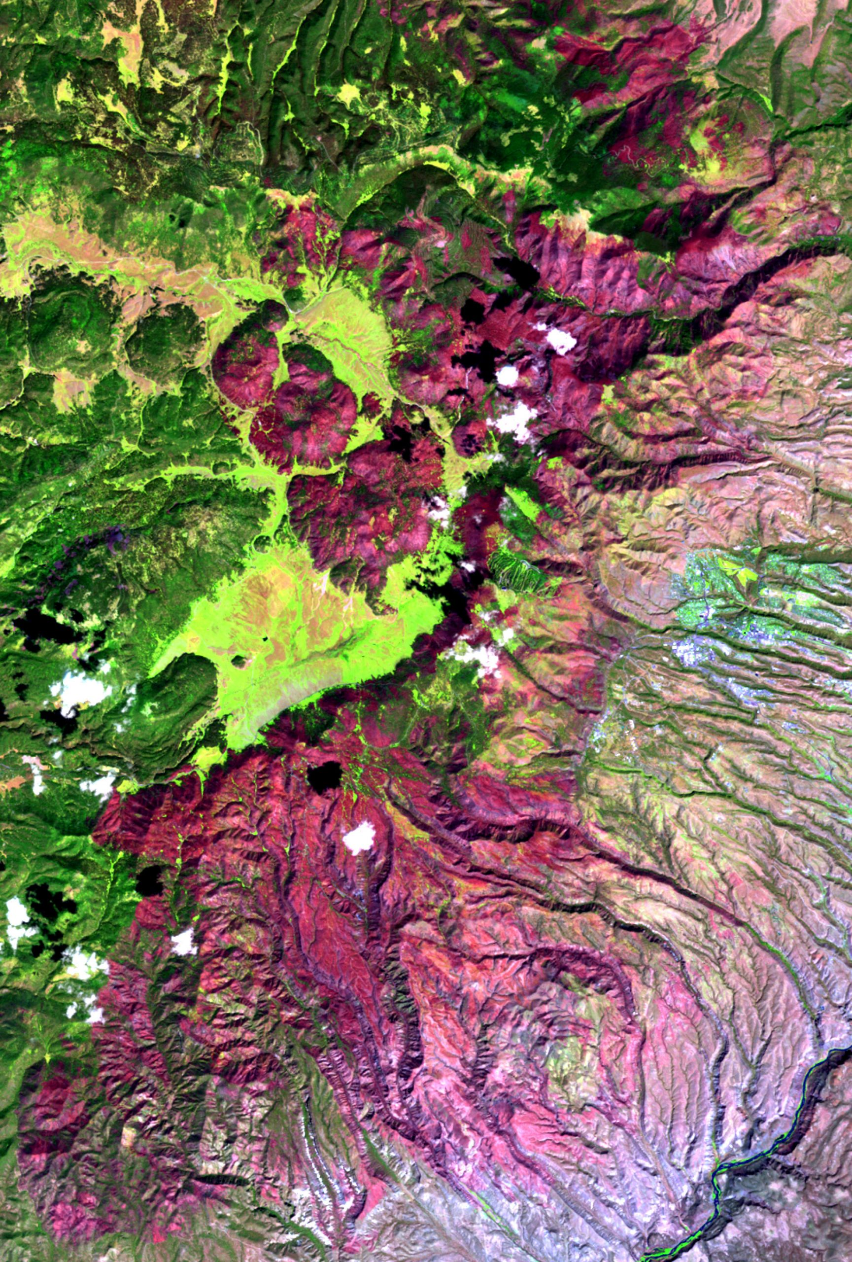 A satellite image of the 2011 Las Conchas Fire in New Mexico shows the 150,874 acres burned in magenta and the unburned areas in green. This image was created with data from the Monitoring Trends in Burn Severity (MTBS) Project that the authors of a new study, led by the University of Utah geographer Phil Dennison, used to measure large wildfires in the western United States.