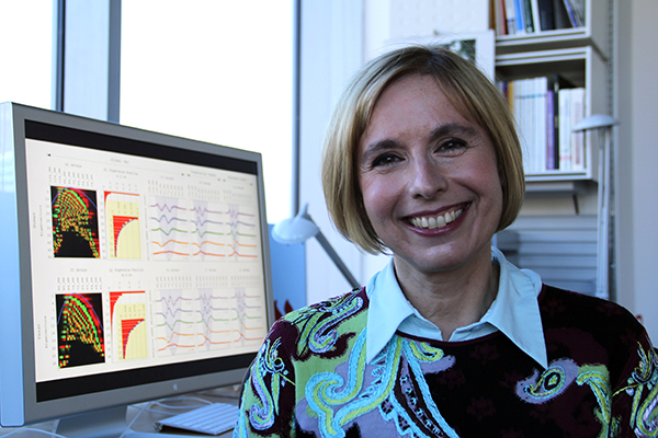 In her Genomic Signal Processing Lab, Alter develops new mathematical techniques, inspired by theoretical physics, for finding patterns in data.