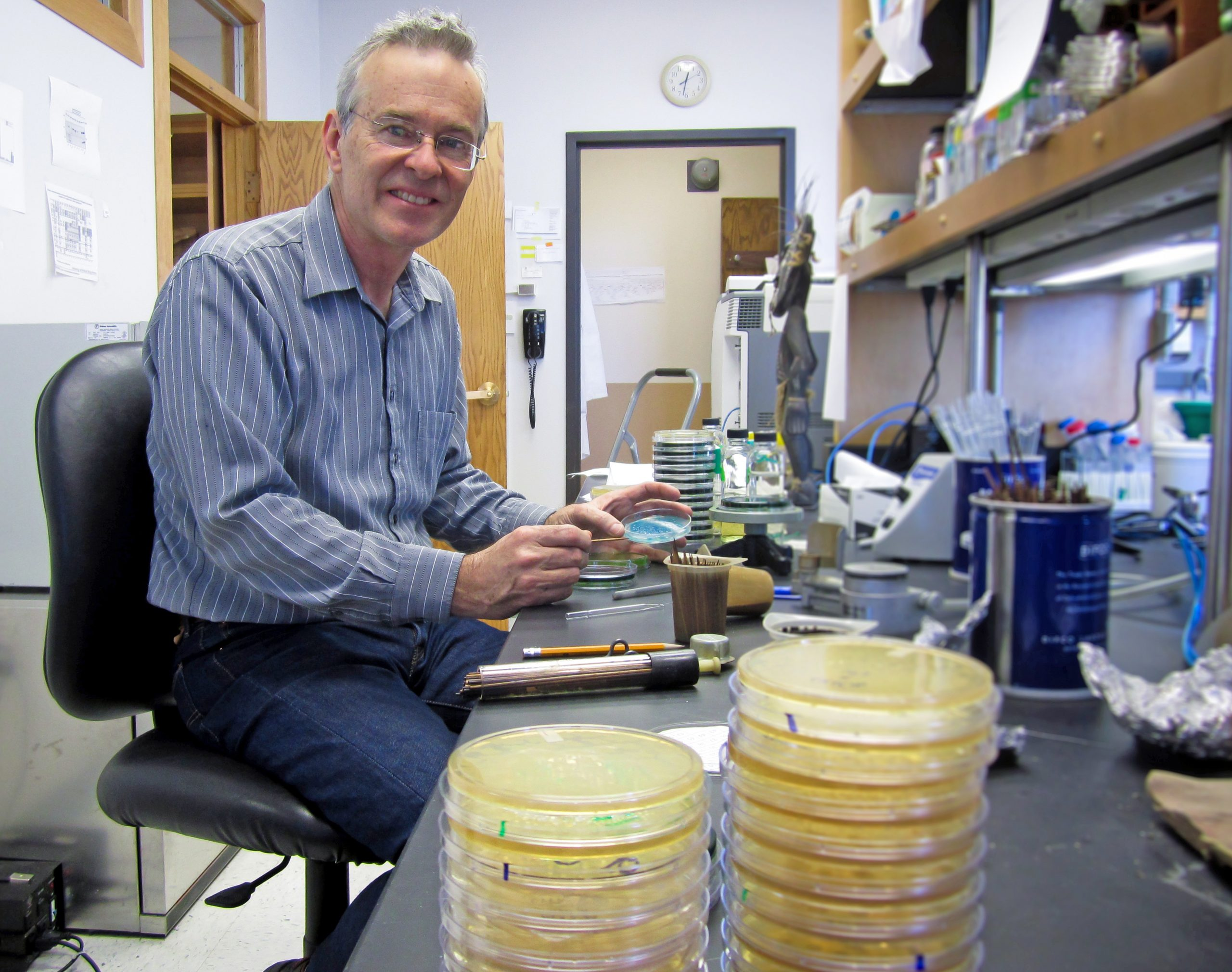 """Biology professor Kelly Hughes in his University of Utah lab. He is senior author of a new study showing that salmonella bacteria – like plague and certain other disease-causing bacteria – use a molecular ruler or tape measure to determine the length of the bacterial """"injectisomes,"""" which are needles these bacteria use to inject infection-promoting proteins into target cells. The study, co-authored by doctoral student Daniel Wee, has potential long-term applications for new antibiotics and targeted anticancer drugs, and for helping people design machines at the nanoscopic or molecular scale."""
