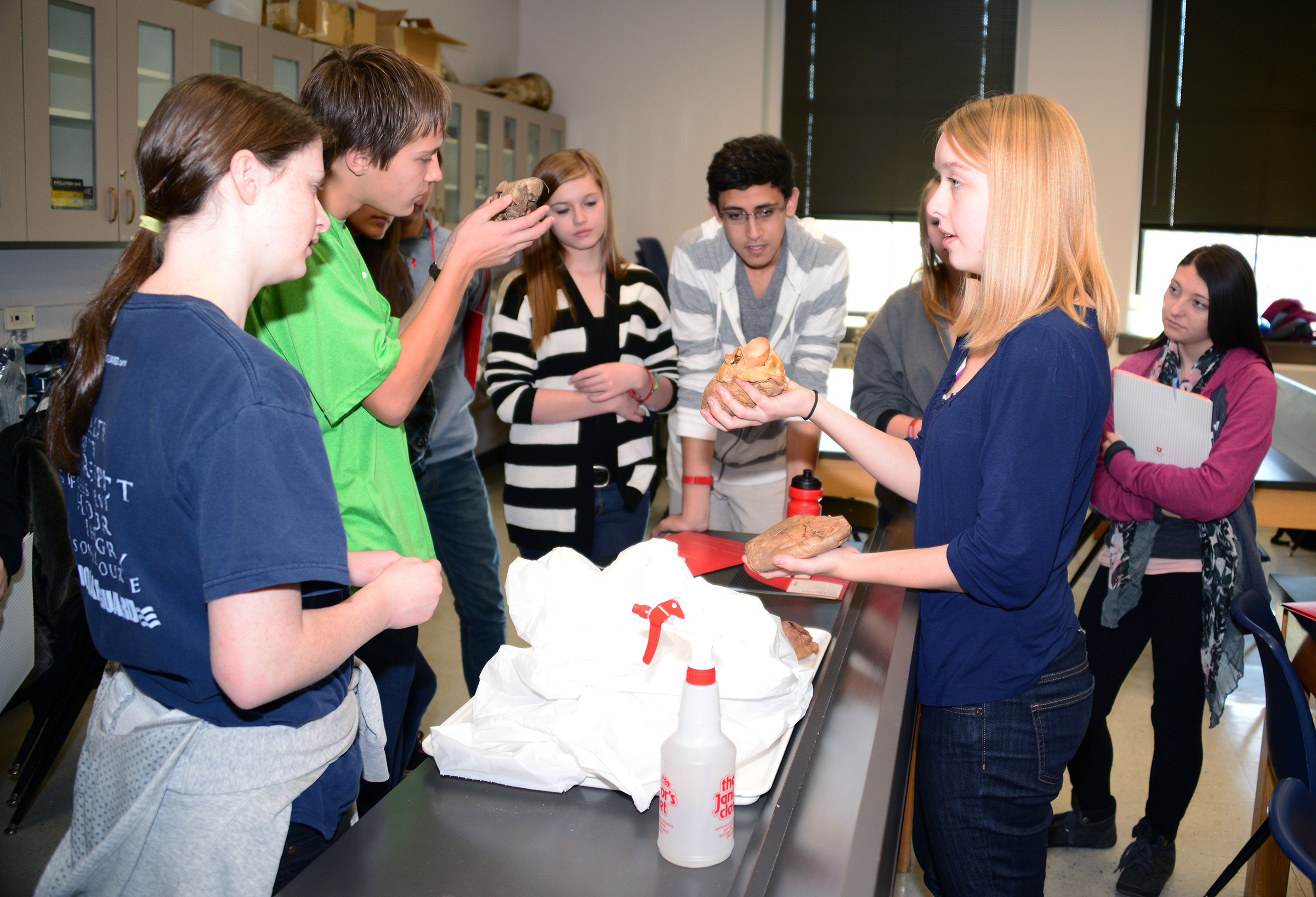 High school students handle organs during a human anatomy workshop during last year's Science Day at the U, the University of Utah's largest recruitment event. This year's event is Saturday, Nov. 15, 2014.