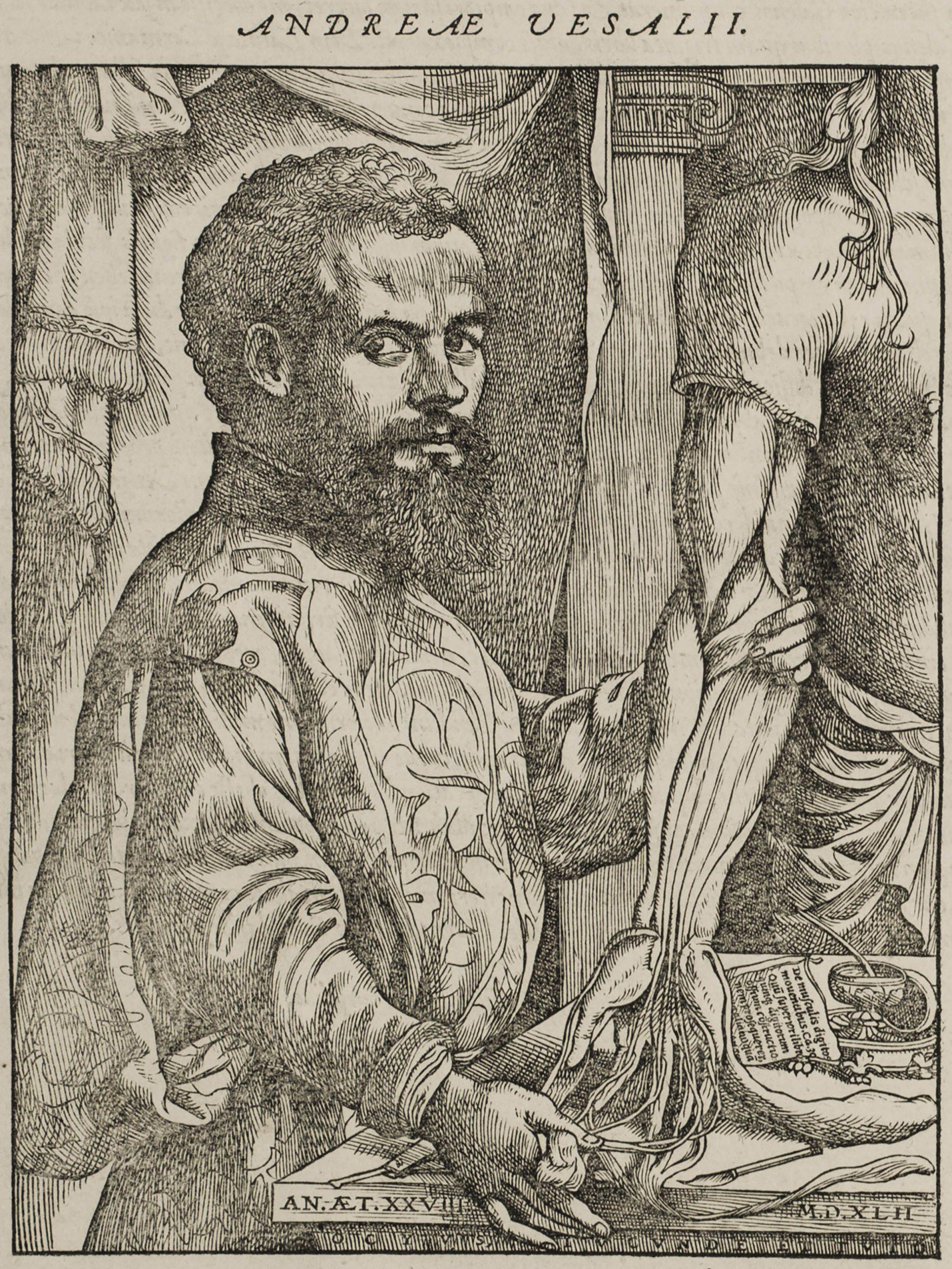 Book title: De humani corporis fabrica (1555)