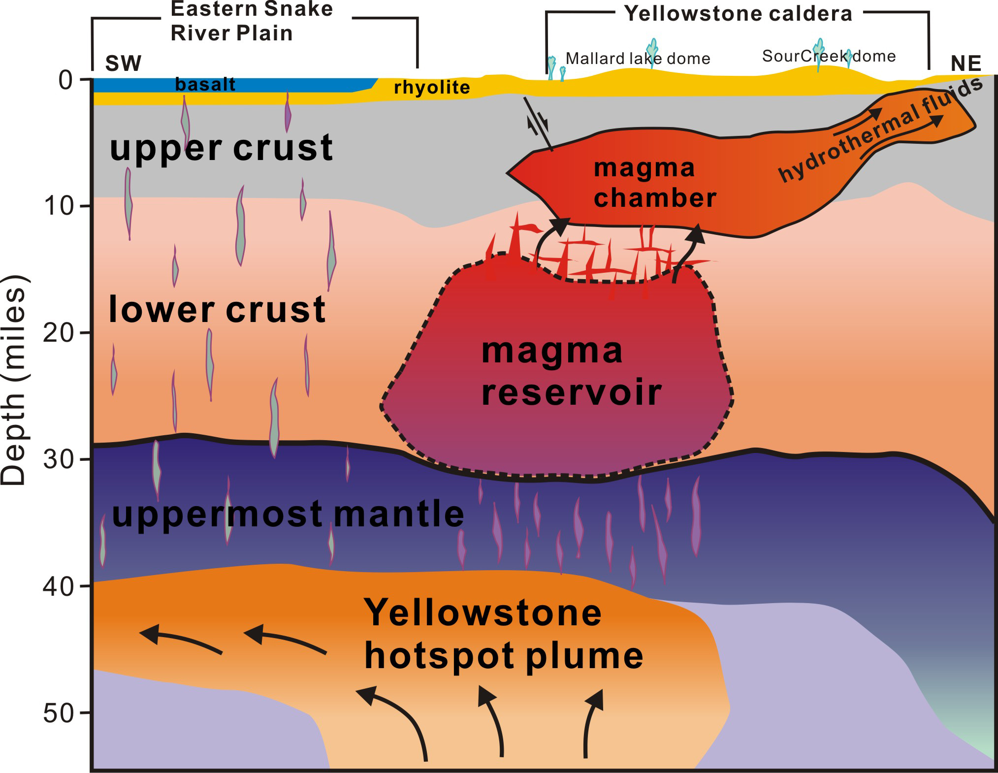 A new University of Utah study in the journal Science provides the first complete view of the plumbing system that supplies hot and partly molten rock from the Yellowstone hotspot to the Yellowstone supervolcano. The study revealed a gigantic magma reservoir beneath the previously known magma chamber. This cross-section illustration cutting southwest-northeast under Yelowstone depicts the view revealed by seismic imaging. Seismologists say new techniques have provided a better view of Yellowstone's plumbing system, and that the supervolcano hasn't grown larger or closer to erupting. They estimate the annual chance of a Yellowstone supervolcano eruption is 1 in 700,000.