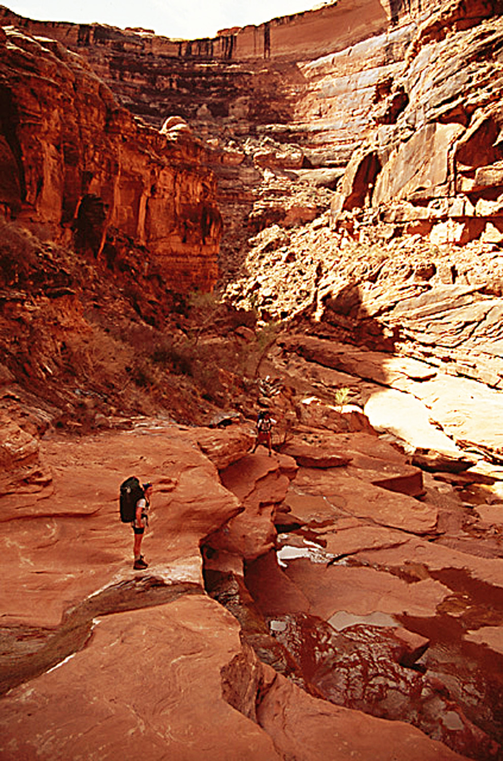 Students experience the rugged beauty of Utah with Professor Dan McCool.