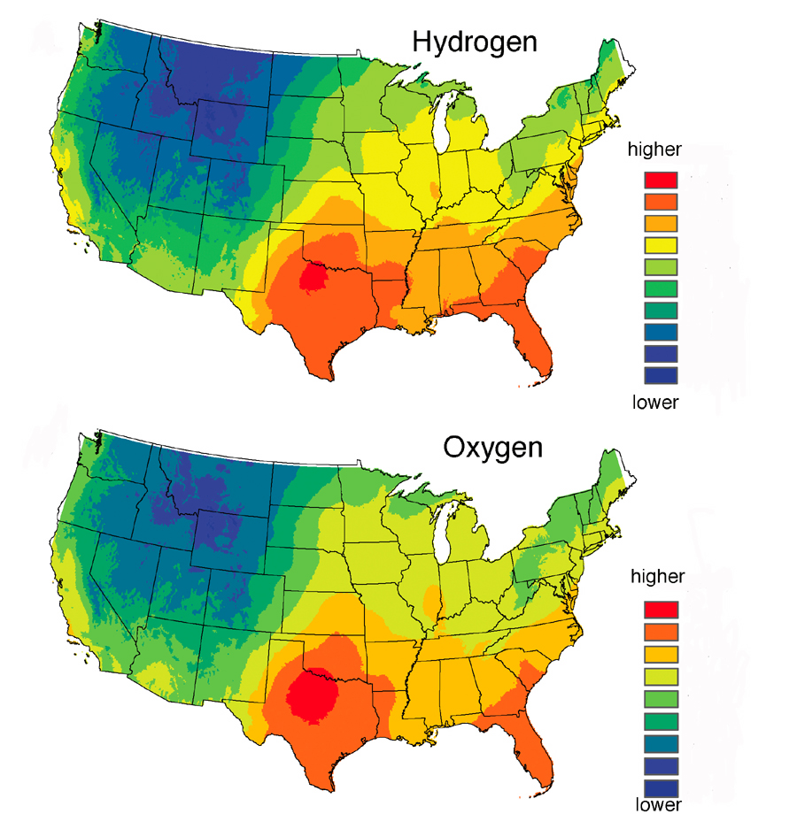 The two maps here show predicted average hydrogen (top) and oxygen (bottom) isotope levels in human hair across the continental United States -- isotopes that vary with geography because of different isotope levels in local drinking water. The ratios of heavy, rare hydrogen-2 to lighter, common hydrogen -1 are highest in red and orange areas in the top map, and lowest in the blue and darker green areas. The ratios of heavy, rare oxygen-18 to lighter, common oxygen-16 are highest in red and orange areas of the bottom map, and lowest in the blue and darker green areas.