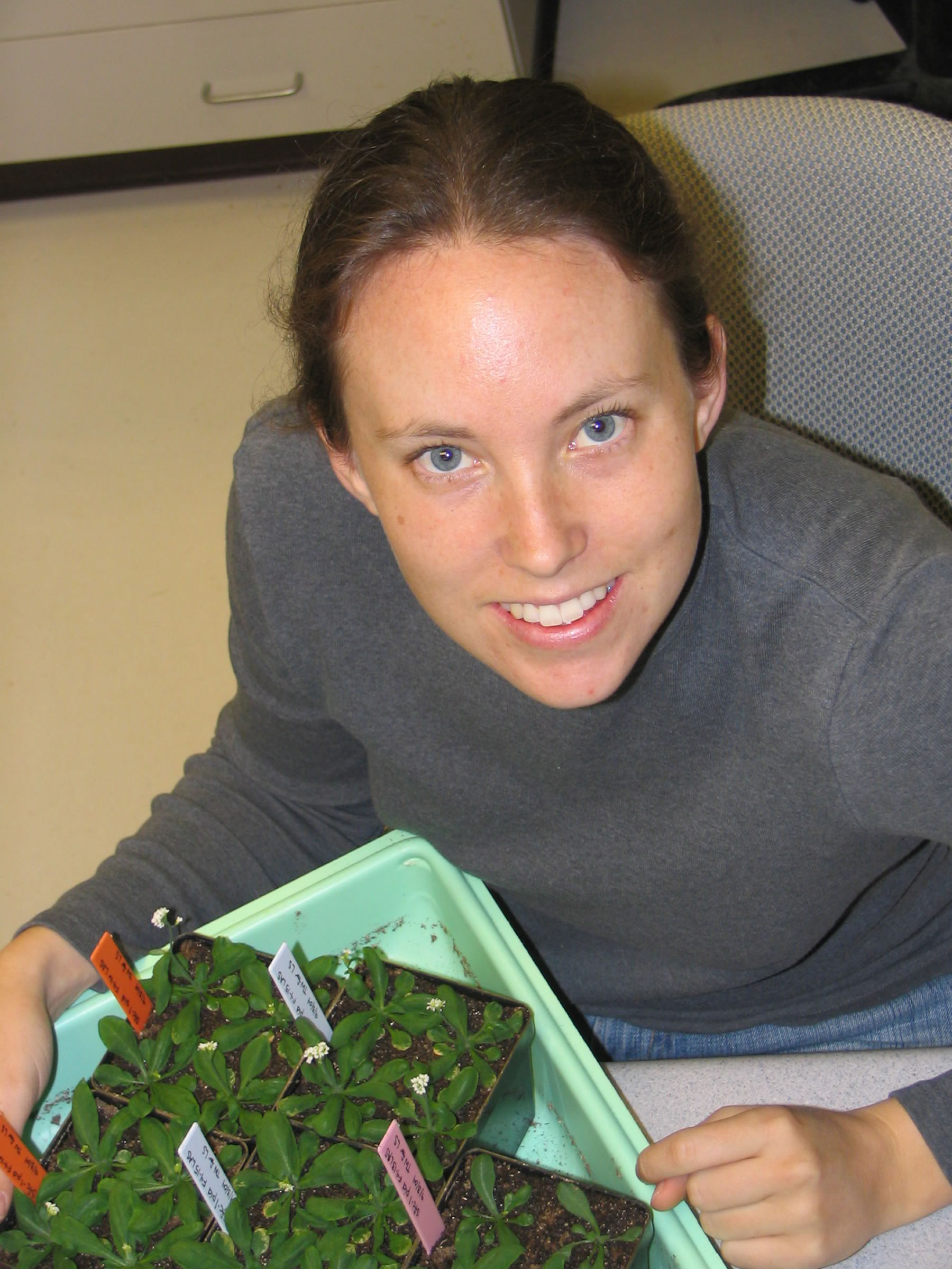 Jaimie Van Norman, a University of Utah graduate student in biology, helped discover a gene that plant roots use to control leaf growth.