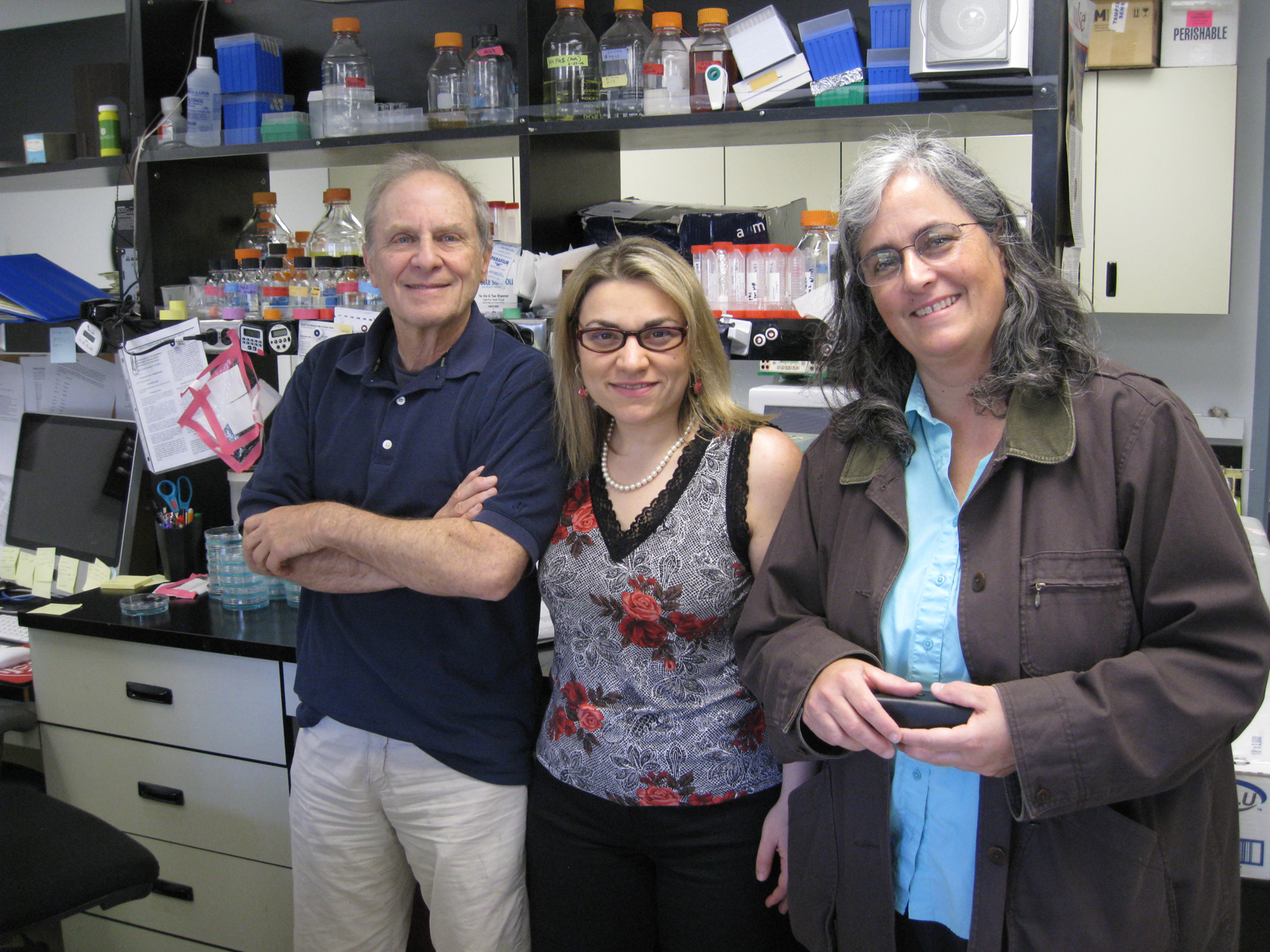 University of Utah molecular biologists Jerry Kaplan, Ivana De Domenico and Diane Ward have made a surprising discovery that hepicidin -- a hormone that helps regulate iron balance in the body -- can prevent deadly inflammation in mice. Their study raises hope that the substance someday might be used to combat a variety of human inflammatory diseases.