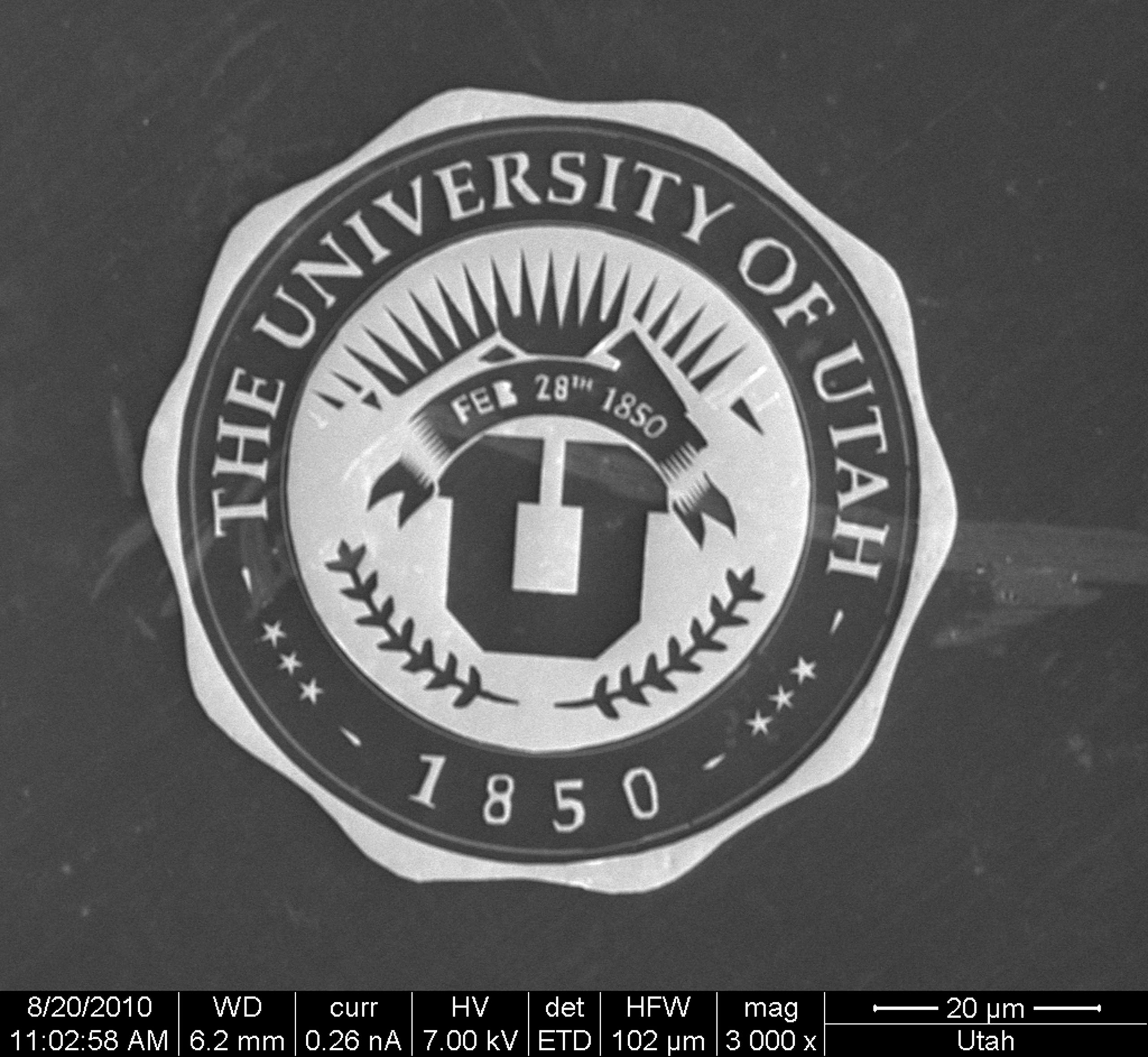 This electron microscope image shows a gilded University of Utah medallion -- one of several official symbols and logos for the university -- that measures only 70 microns across, which is about the diameter of a single blonde human hair. The medallion is magnified 3,000 times in this image. The gold-covered parts of the medallion appear white, while the silicon background is dark. The medallion was made using a process called electron-beam lithography. It was created by Randy Polson, a senior optical engineer at the university's Department of Physics and Astronomy, as part of his job adjusting the microscope for use by researchers and private businesses.