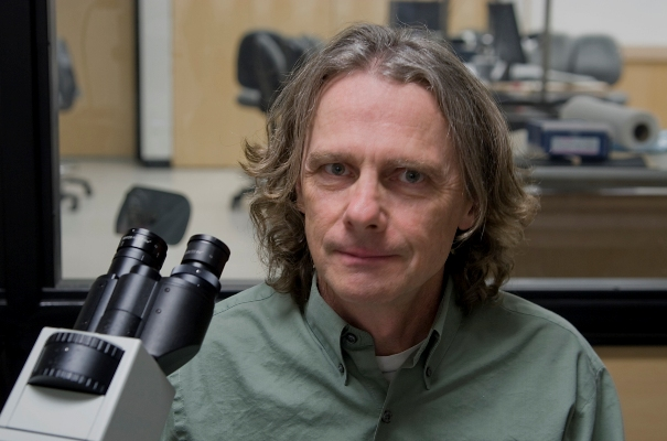 """Richard Rabbitt, professor and chair of bioengineering at the University of Utah, led a study indicating that a mechanism known as """"flexoelectricity"""" works within the cochlea of the ear to amplify quiet sounds. Bundles of tiny hair-like tubes called stereocilia dance back and forth atop """"hair cells"""" in the cochlea, serving as """"flexoelectric motors"""" to amplify sound mechanically. Rabbitt says it is like power steering for your hearing."""
