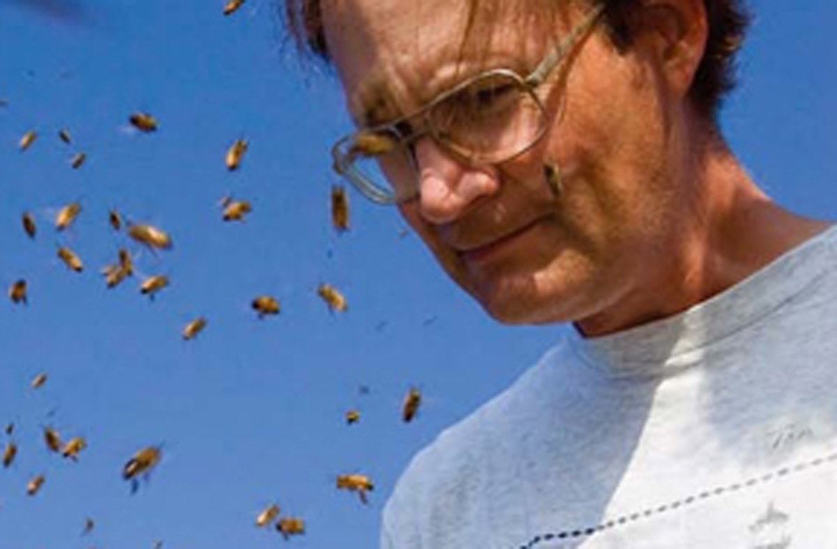 """Thomas Seeley, bee biologist and author of Honeybee Democracy, will keynote the sixth annual Utah Science and Literature Symposium at the University of Utah on March 5th at 7:00 p.m. The Symposium """"A Bird in the Hand: Our choices, good and bad, and how we make them"""" continues through Friday March 7th."""
