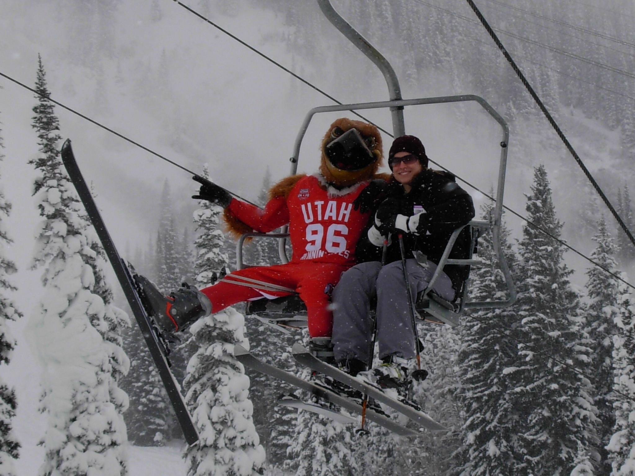 Swoop, the University of Utah's mascot, rides the chair at Snowbird Resort, ready for another great powder run at Ski and Shred Red Day, December 2007.