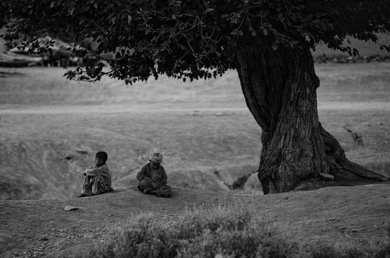 Young boys pass time under a tree as US and Afghan forces search their village in rural Afghanistan, 2007